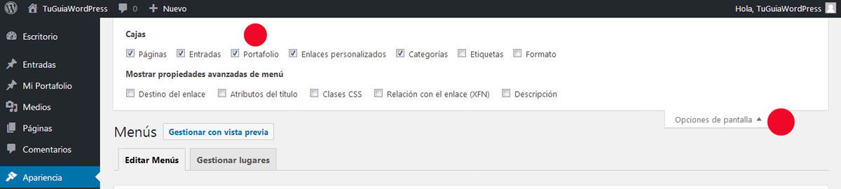 Mostrar Personalizar Custom Post Type